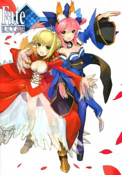 Fate/Extra Visual Fanbook + Fate/EXTRA material